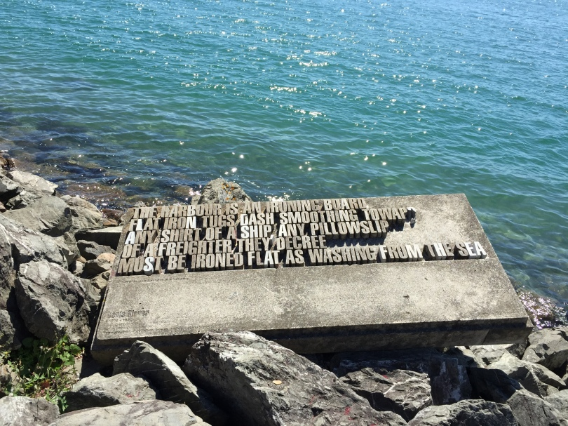 Harbor insight