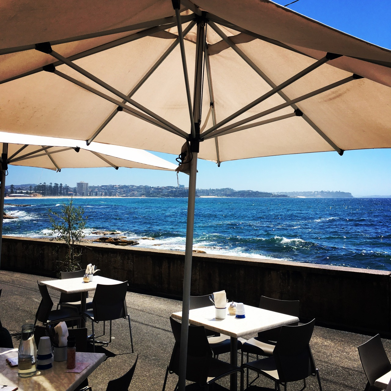 The Bower Restaurant in Manly, Australia