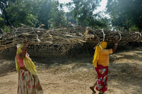 Women carrying sticks India
