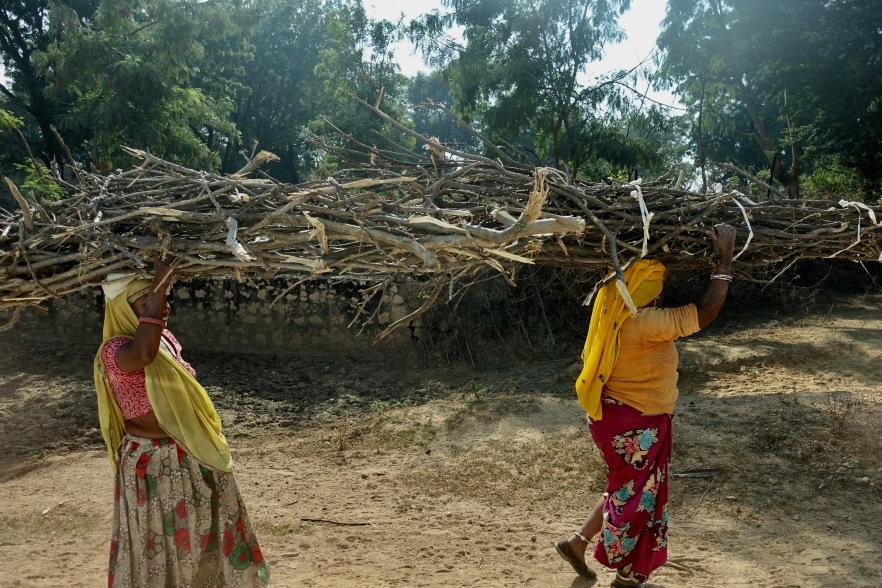 Women carrying sticks India